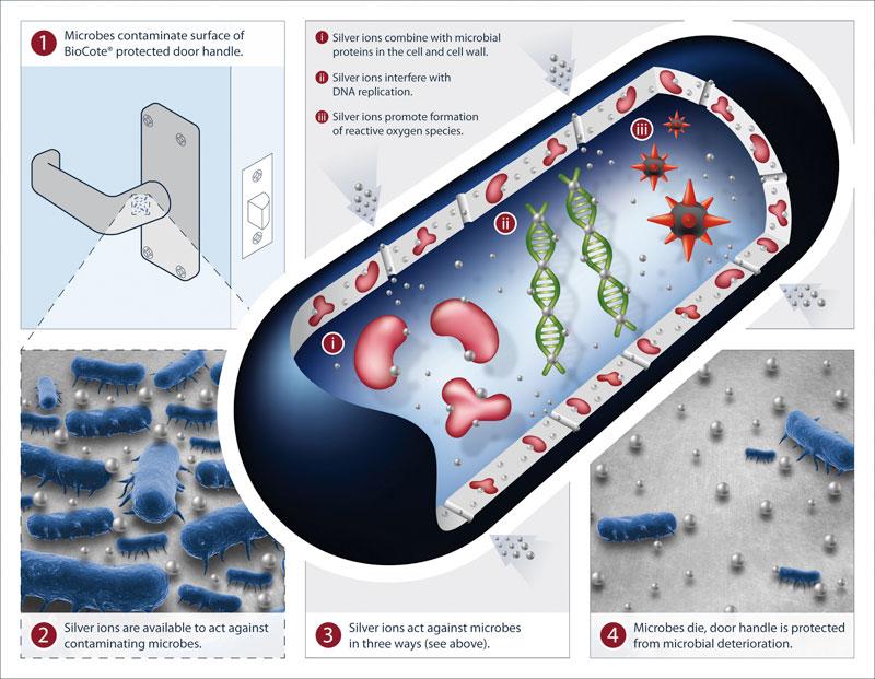 salto bio microbial